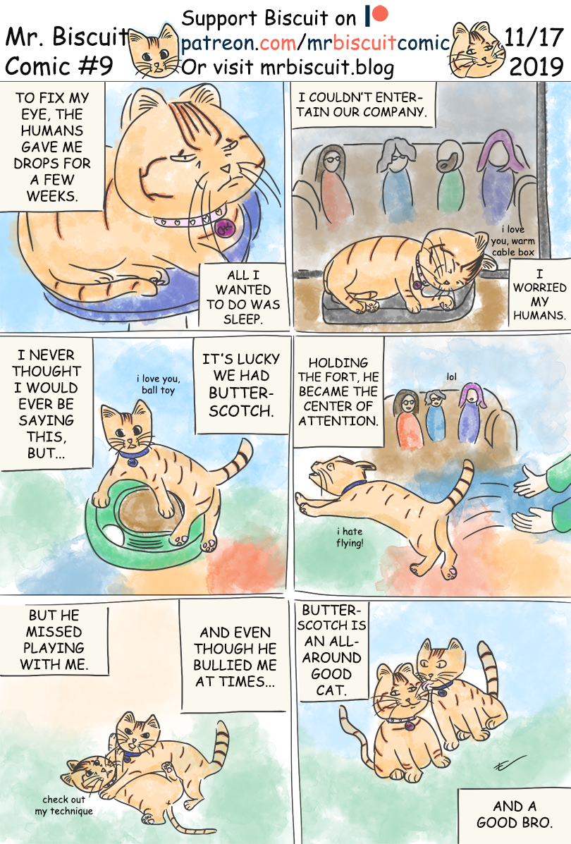Mr. Biscuit #9: That's a Good Kitty